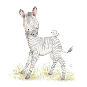 Nursery illustration safari zebra